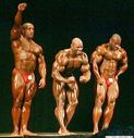 fotos_flex_wheeler_590.jpg