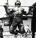 fotos_franco_columbu_008.jpg